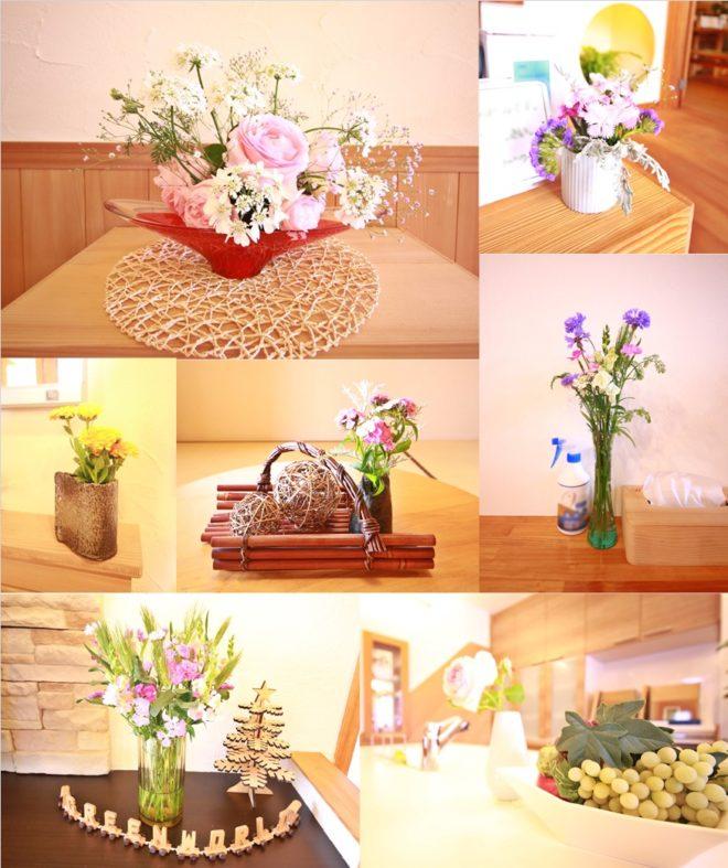 5/15今週のお花たち