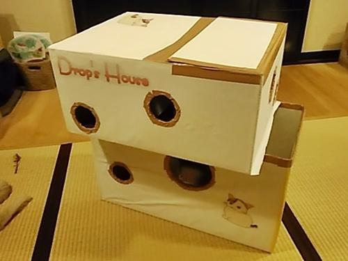 ねこハウスを作ってみました!