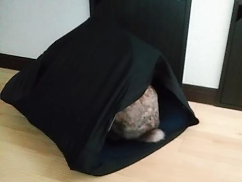 うさテントを作ってみました!